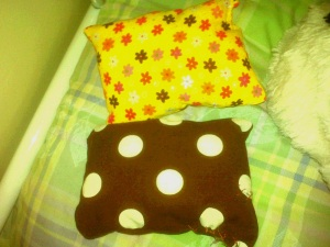 Two catnip pillows for two lucky cats